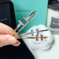 ティファニー ブレスレット 新作 コーデの魅力を引き出す人気新作 Tiffany & Co コピー 多色可選 デイリー おすすめ 最低価格-1
