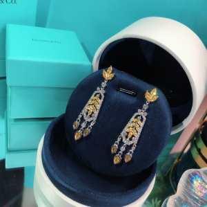 ティファニー使いやすい新品  Tiffany&Co 世界共通のアイテム イヤリング是非ともオススメしたい-3